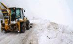 Mini-iarna din aprilie bagã agricultura vasluianã în faliment